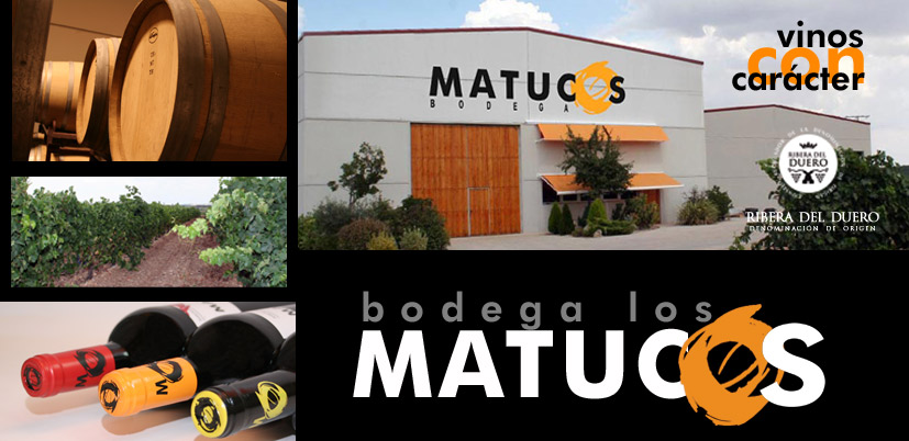 BODEGA LOS MATUCOS